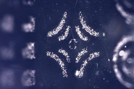 """El sello """"Electroadhesivo"""" recoge y deposita las estructuras microscópicas."""