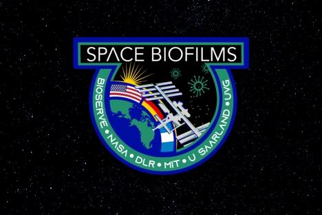 3 preguntas: cómo controlar las biopelículas en el espacio