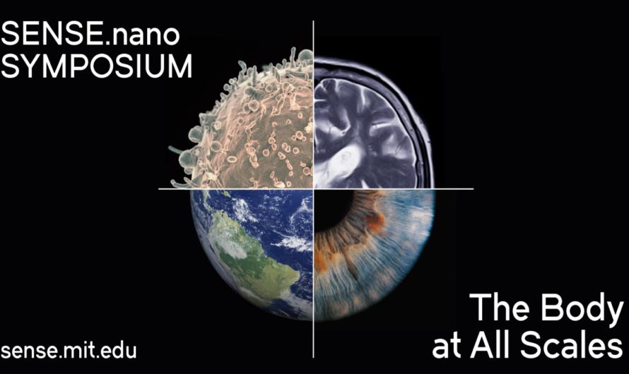 Siente el cuerpo en todas las escalas | Noticias del MIT