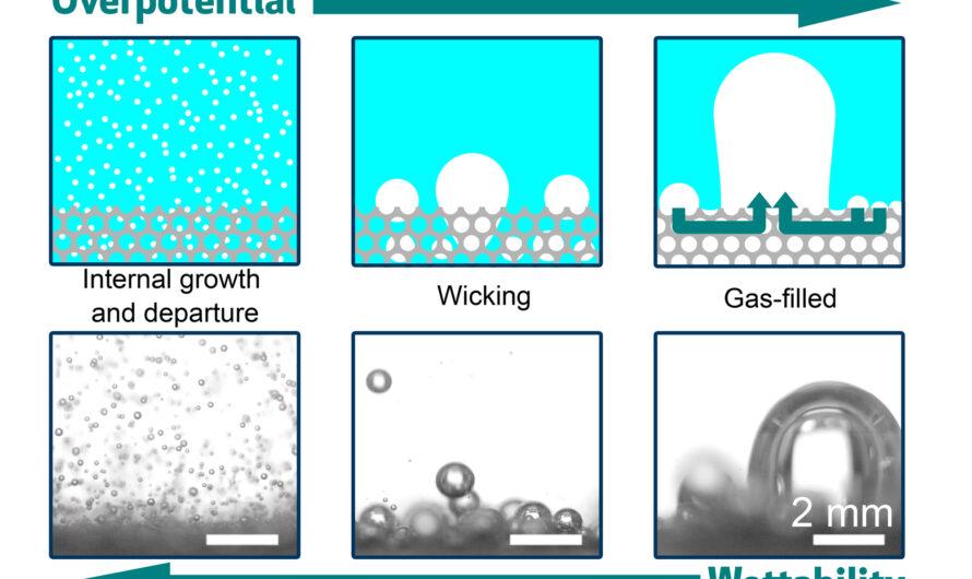 Comprobación de la formación de burbujas en los electrodos | Noticias del MIT