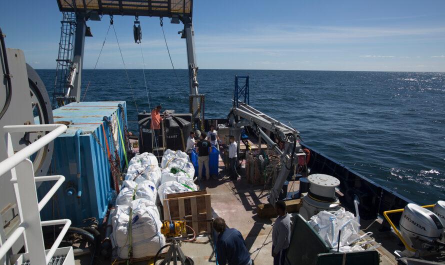 ¿Qué pasará con las columnas de sedimentos asociadas con la minería de aguas profundas? | Noticias del MIT