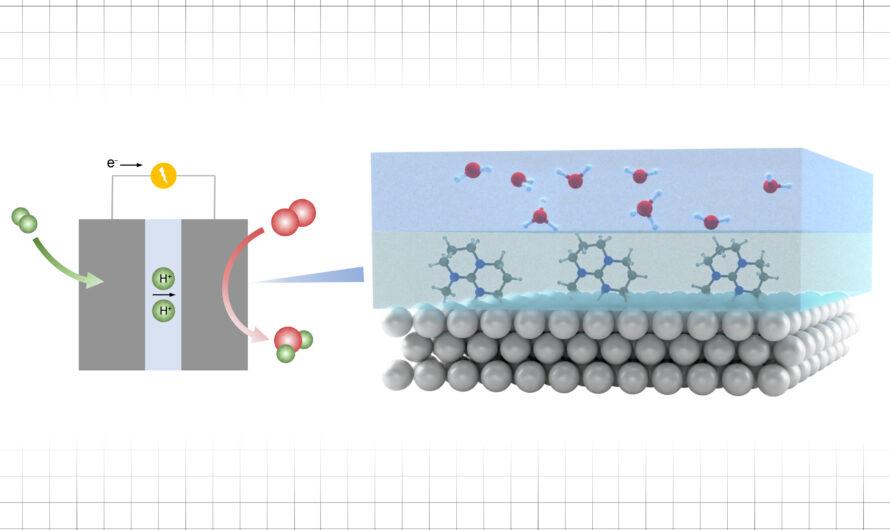 Haciendo que las superficies catalíticas sean más activas para ayudar a descarbonizar combustibles y químicos | Noticias del MIT